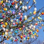 Топ-10 интересных событий в Санкт-Петербурге на выходные 7 и 8 апреля фотографии