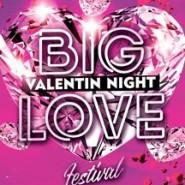Фестиваль «BIG LOVE NIGHT» фотографии