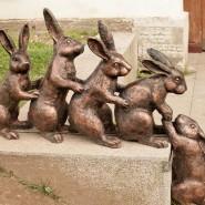 Музей истории Санкт-Петербурга разыскивает зайцев фотографии