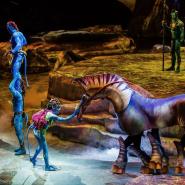 TORUK Cirque du Soleil фотографии