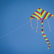 Праздник воздушных змеев «На крыльях ветра» 2016 фотографии