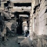 Выставка «Вот таким тыувидишь Египет…» фотографии