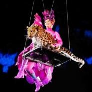 Цирк Чинизелли «Посланник» фотографии