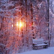 Топ-10 интересных событий в Санкт-Петербурге на выходные 7 и 8 декабря фотографии