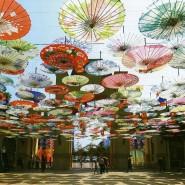 Фестиваль «Китайский Новый Год в Санкт-Петербурге» 2018 фотографии