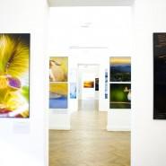 Выставка «Первозданная Россия» в Росфото фотографии