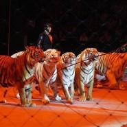 Цирковое представление «ЭпиЦЕНТР мира» фотографии