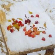 Выставка «Александр Зимин. Живопись» фотографии
