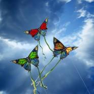 Фестиваль воздушных змеев  «Летать легко!» 2016 фотографии