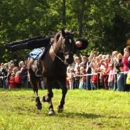 Конно-спортивный праздник «Елагинская карусель» 2017 фотографии