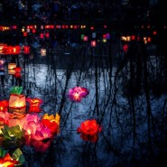 Фестиваль водных фонариков 2019 фотографии