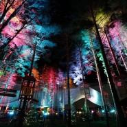 Каток в Охта Парке 2016 фотографии