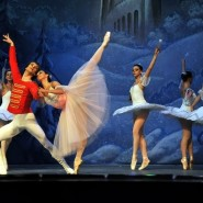 Показ балета  «Щелкунчик» в Новой Голландии фотографии