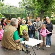 День Рождения Ленинградского зоопарка фотографии