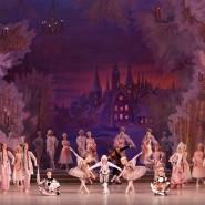 Государственный академический Мариинский театр фотографии