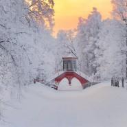 Новогодние праздники в Царском селе 2019 фотографии