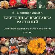 Выставка кактусов 2019 фотографии