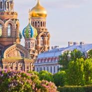 Топ лучших мероприятий на выходные 3 и 4 июня в Санкт-Петербурге фотографии