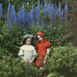 Выставка «Цвет времени. Семья Н. А. Римского-Корсакова в объективе»