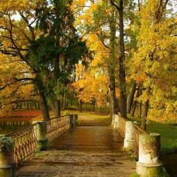 Топ-10 интересных событий в Санкт-Петербурге на выходные 5 и 6 сентября