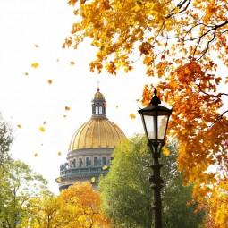 Топ-10 интересных событий в Санкт-Петербурге на выходные 17 и 18 октября 2020