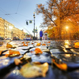Топ-10 интересных событий в Санкт-Петербурге на выходные 12 и 13 октября
