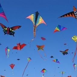 Фестиваль «Крылья ветра» 2019