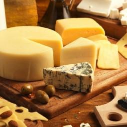 Фестиваль крафтового сыра «Сырный Weekend»