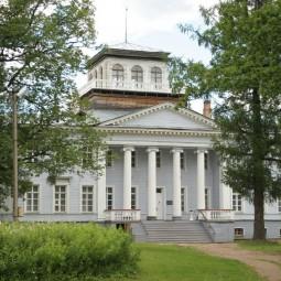 Работа учреждений культуры Ленобласти в новых условиях