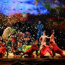 Шоу «OVO Cirque du Soleil»