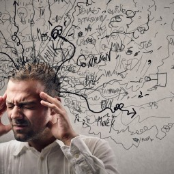 Лекция «Физиология стресса и продуктивности, или что мы не знаем о себе?»