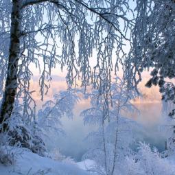 Топ-10 интересных событий в Санкт-Петербурге на выходные 30 ноября и 1 декабря