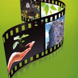 Экологический кинофестиваль «Меридиан надежды» 2019