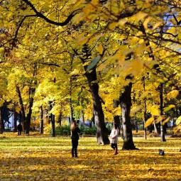 Топ-10 интересных событий в Санкт-Петербурге на выходные 19 и 20 октября 2019