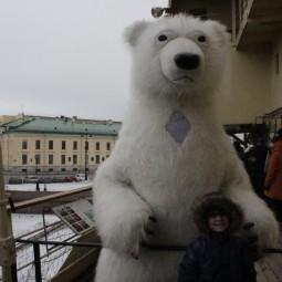 День Белого медведя на ледоколе Красин