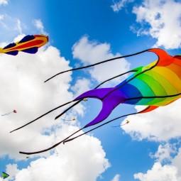 Фестиваль воздушных змеев  «Летать легко!» 2017