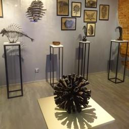 Выставка «Пелагиаль»