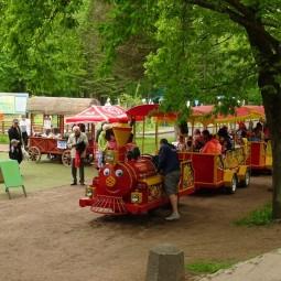 День города Сестрорецк в парке «Дубки» 2018