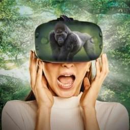 Интерактивная выставка виртуальной реальности KOD-2021