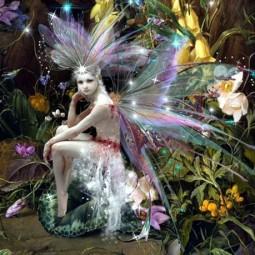 Фестиваль «Волшебное Древо» 2016