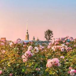 Топ-10 интересных событий в Санкт-Петербурге на выходные 19 и 20 мая
