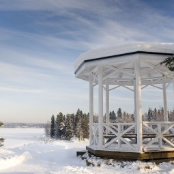 Зимние прогулки в парке «Монрепо» 2021