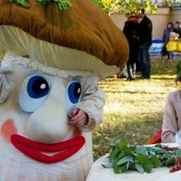 Фестиваль грибов и ягод в Санкт-Петербурге 2017