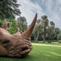 Выставка «Стефано Бомбардьери. Мальчик и слон»