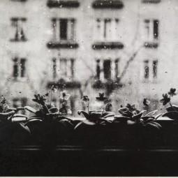 Цикл лекций «Петербургская фотография конца ХХ — начала ХХI века в лицах»