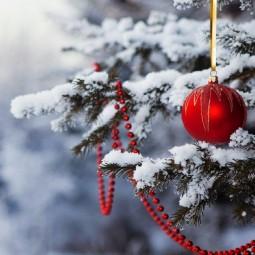 Топ-10 интересных событий в Санкт-Петербурге на выходные 22 и 23 декабря