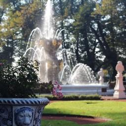 Фестиваль «Летний сад — 315»