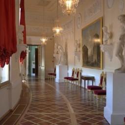 Выставка «Анфилада залов восточного полуциркуля Гатчинского Дворца»