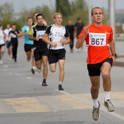47-й легкоатлетический пробег «Гатчина – Пушкин»