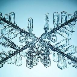 Выставка «Геометрия Зимы»
